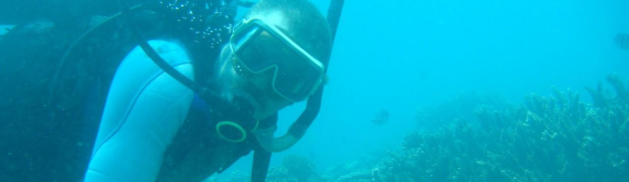 8 Diving