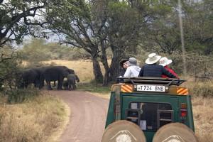 Classic Tanzanian Safari_9759_2