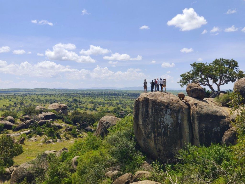 A view over the Serengeti wilderness area