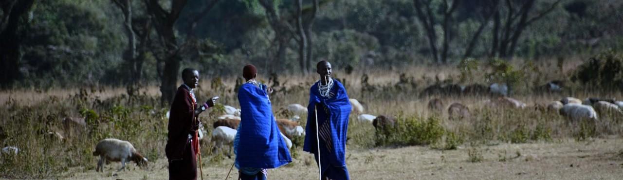 Serengeti National Park - Beautiful World Travel Guide